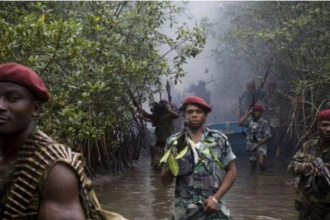 Niger Delta militants declare support for Biafra