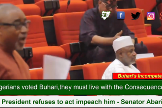 "[VIDEO] ""Nigerians voted Buhari,they must live with consequence or Impeach him""--Senator Abaribe"
