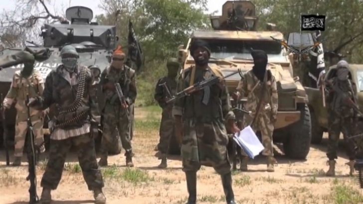 Boko Haram attacks Chadian village