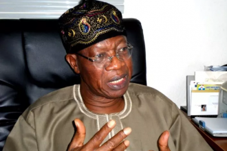 OPPOSITION SPOKESPERSON-Learn from me Lai Mohammed tells Metuh of PDP