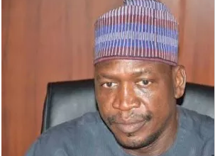Borno state gets new deputy governor