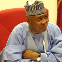 Politics cannot be learnt overnight -Saraki tells Buhari