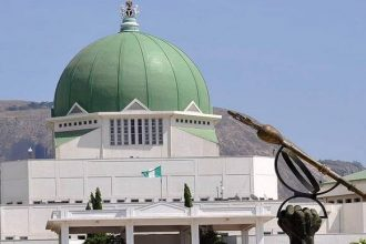 Masked security men storm National Assembly