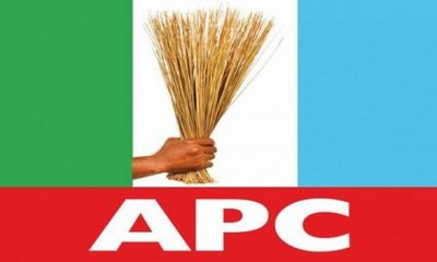 #APC rejects A'Ibom, C'River, Delta polls results