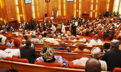 #Senate passes bill recognizing June 12 as 'Democracy Day'